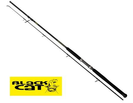 BLACK CAT 2,40m Solid Spin 40g - 160g